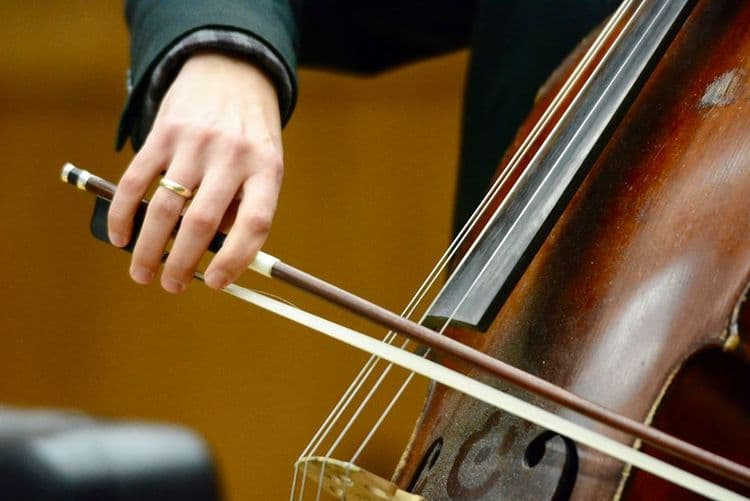 9 Best Cello Strings Must Read Reviews For October 2019